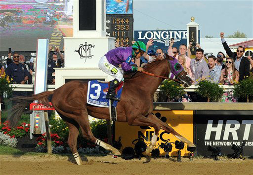 California Chrome, ridden by jockey Victor Espinoza, wins the second leg of the Triple Crown as he runs away with the 139th Preakness Stakes.