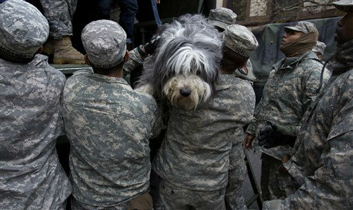 "<div class=""meta image-caption""><div class=""origin-logo origin-image none""><span>none</span></div><span class=""caption-text"">A dog named Shaggy is handed from a National Guard truck to National Guard personnel after the dog and his owner left a flooded building in Hoboken, N.J. (AP Photo/ Craig Ruttle)</span></div>"
