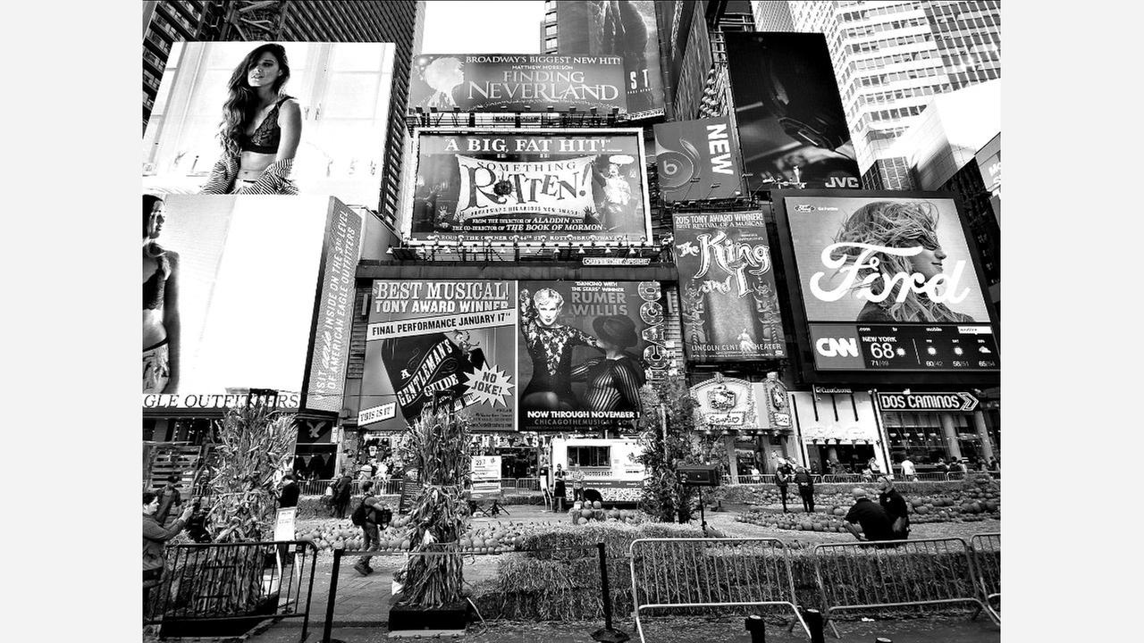 7 Marketing Jobs In New York City