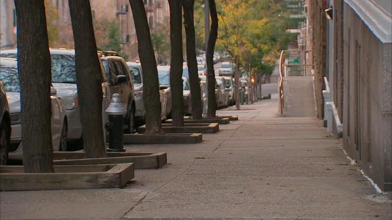 NYPD investigating attempted kidnapping in the Bronx
