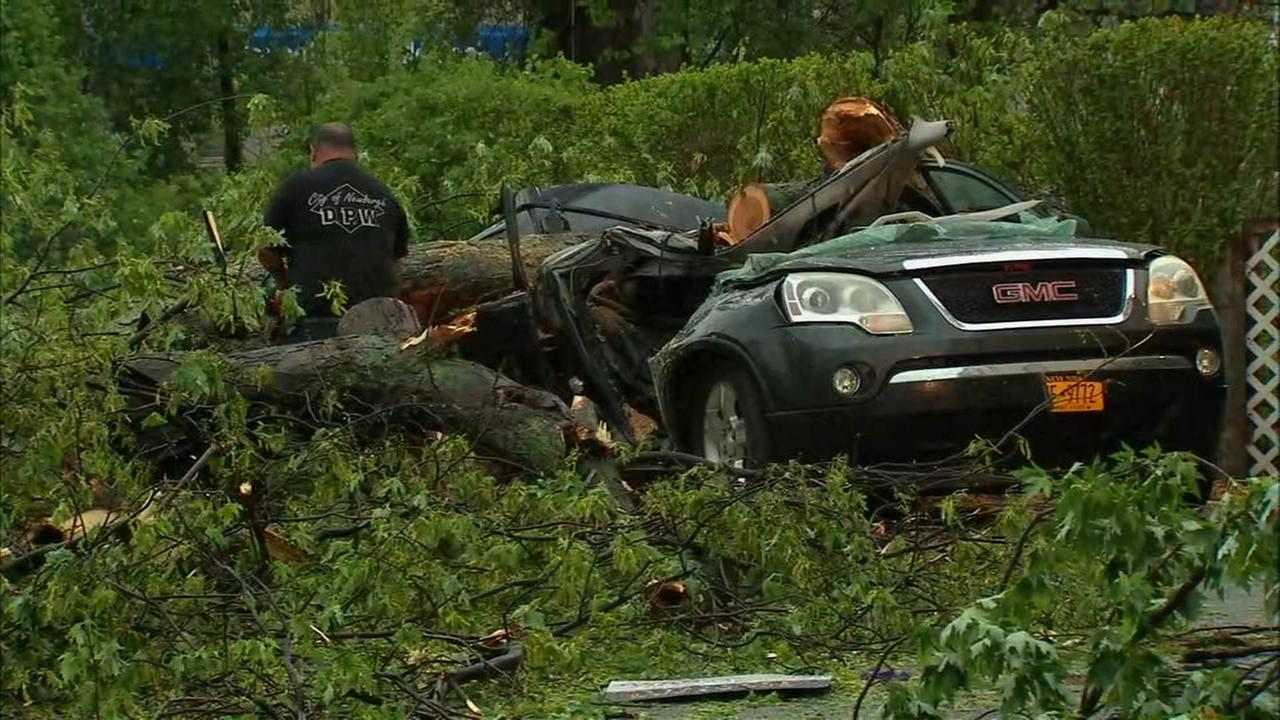 An 11-year-old girl was killed when a tree fell on a car in Newburgh.
