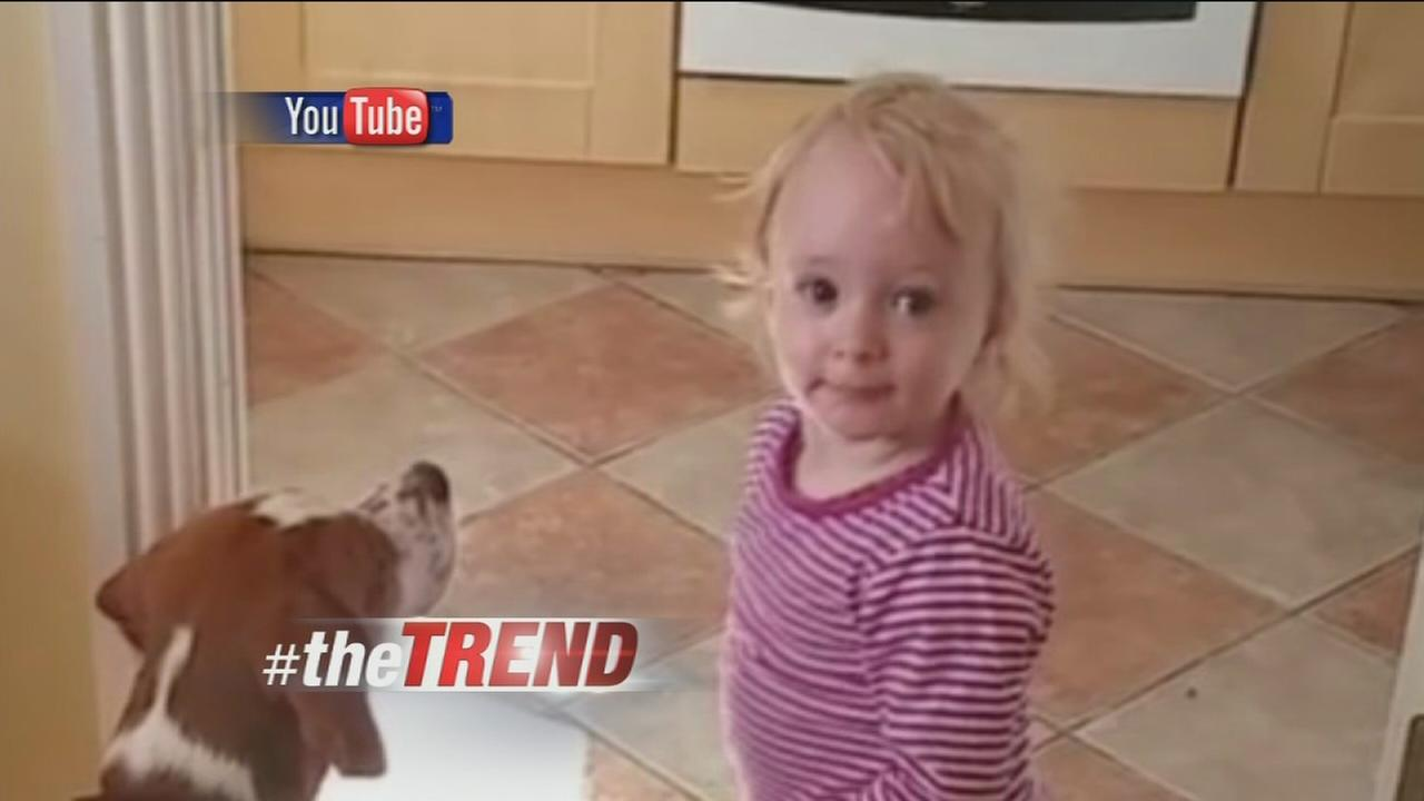 The Trend: Double trouble with a toddler and her dog