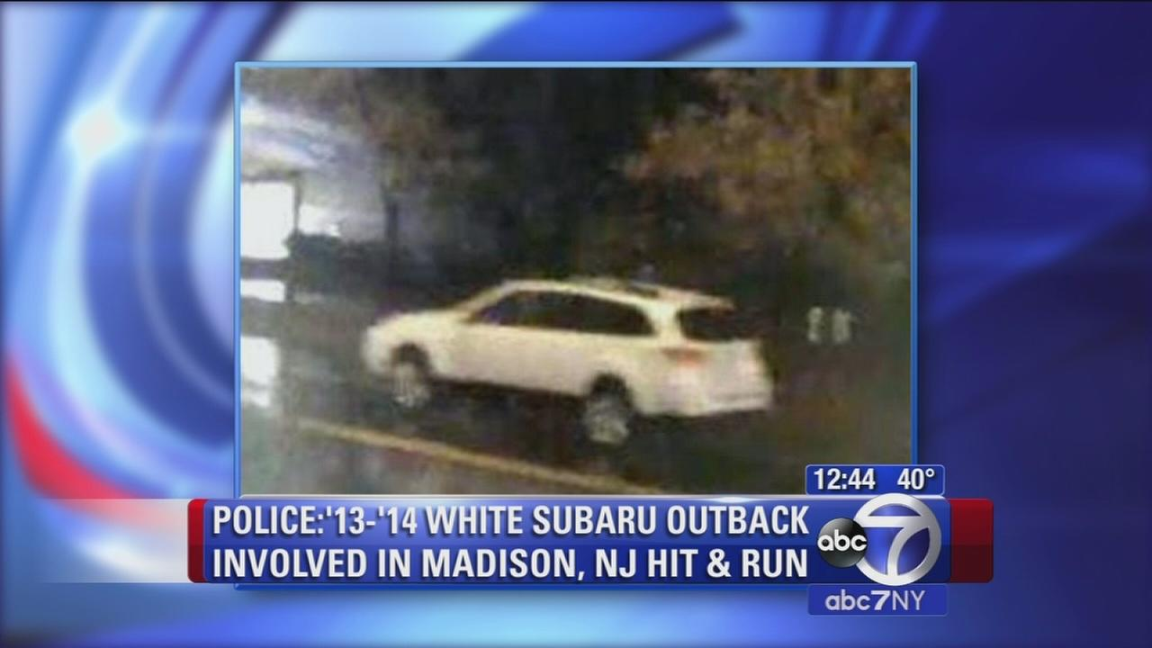 Police hunt for driver in NJ hit and run