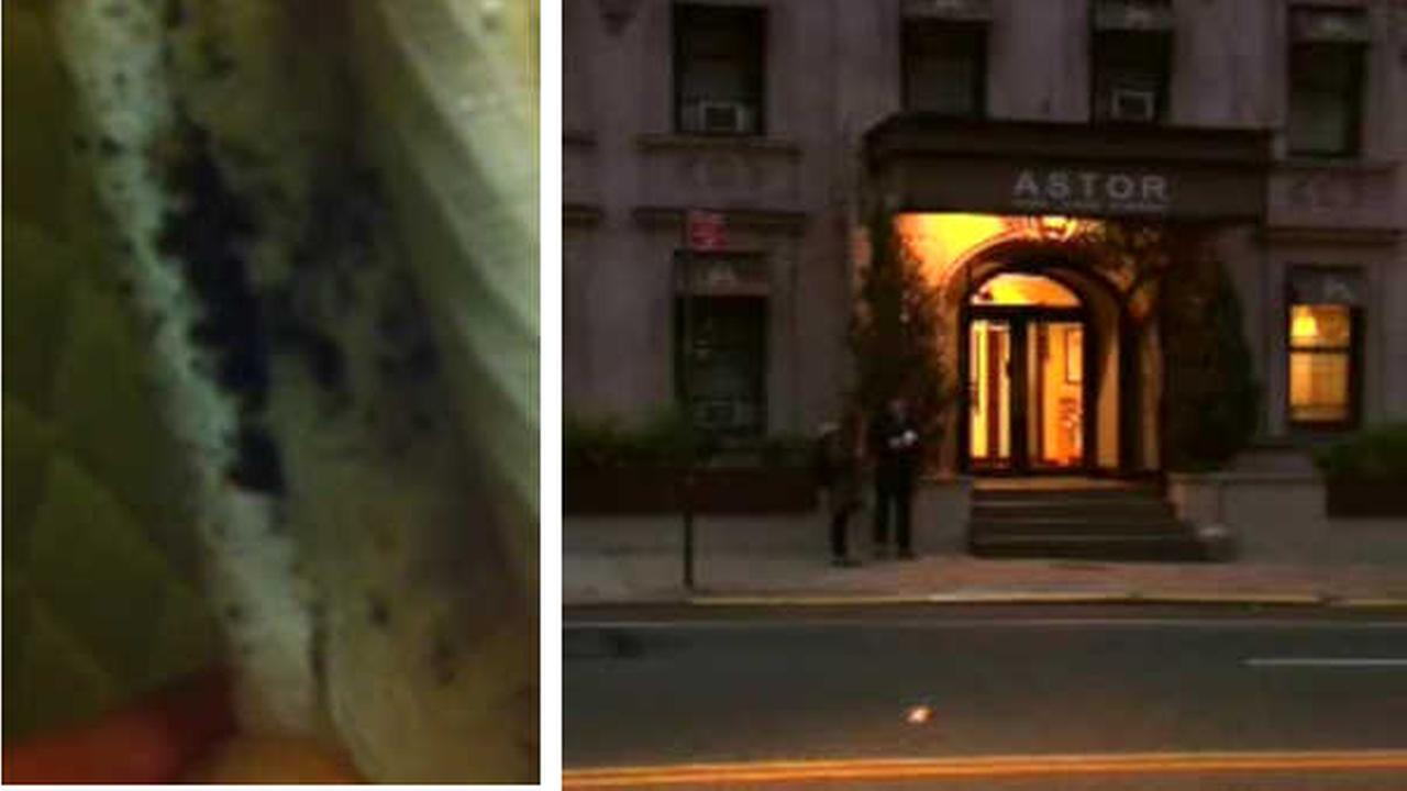 Couple From California Describes Bedbug U0027nightmareu0027 At NYC Hotel | Abc13.com