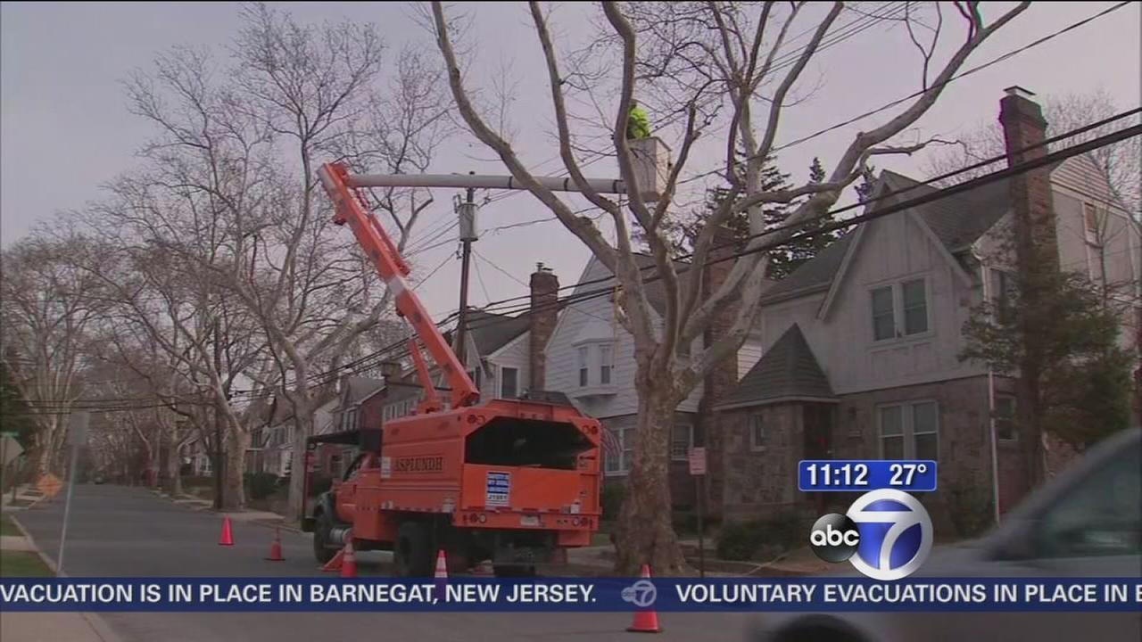 Crews work to clear lines of trees on Long Island