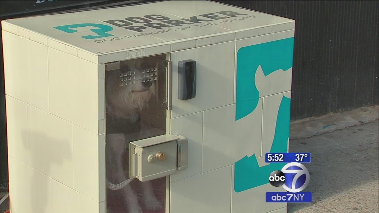 Pet owners can now park their dog