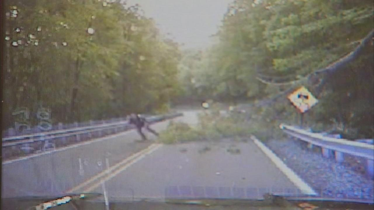 Raw: Officer narrowly misses falling tree