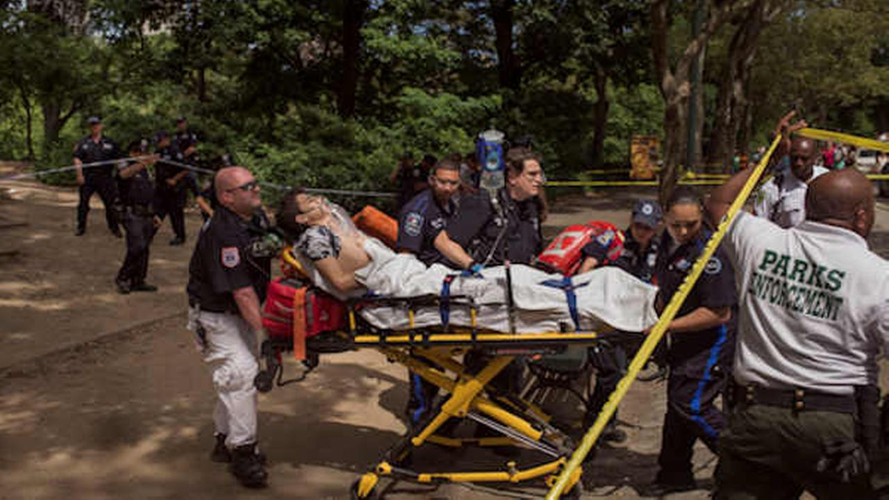 Officials: Device in Central Park likely homemade fireworks