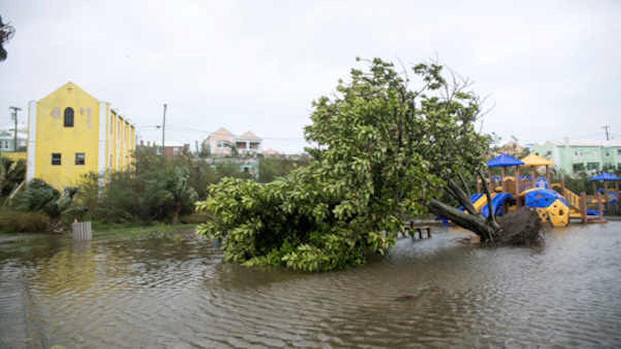 An overturned tree lays on the flooded playground in Mullet Bay, St. Georges, Bermuda.  (AP Photo/Mark Tatem)