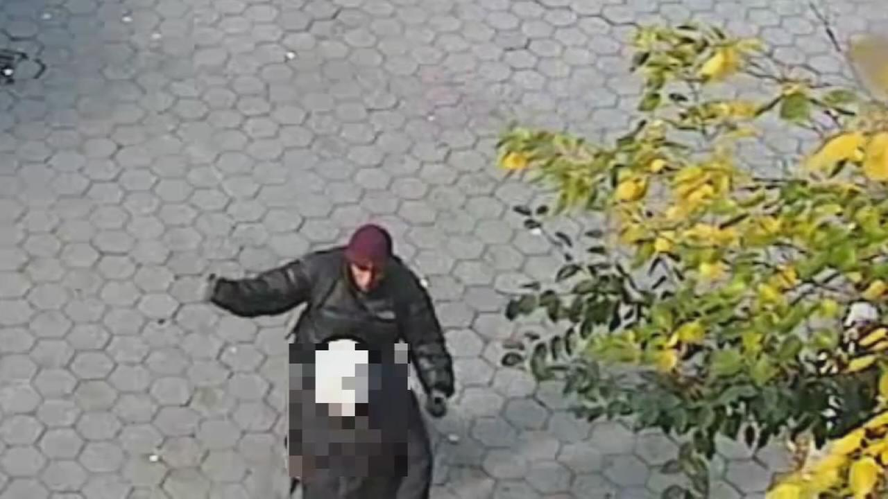 Elderly man punched in the head in Carl Schurz Park
