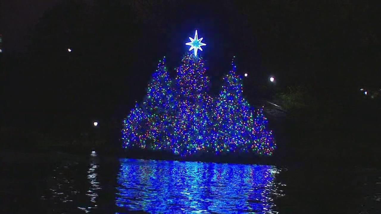 Christmas tree lighting in Central Park