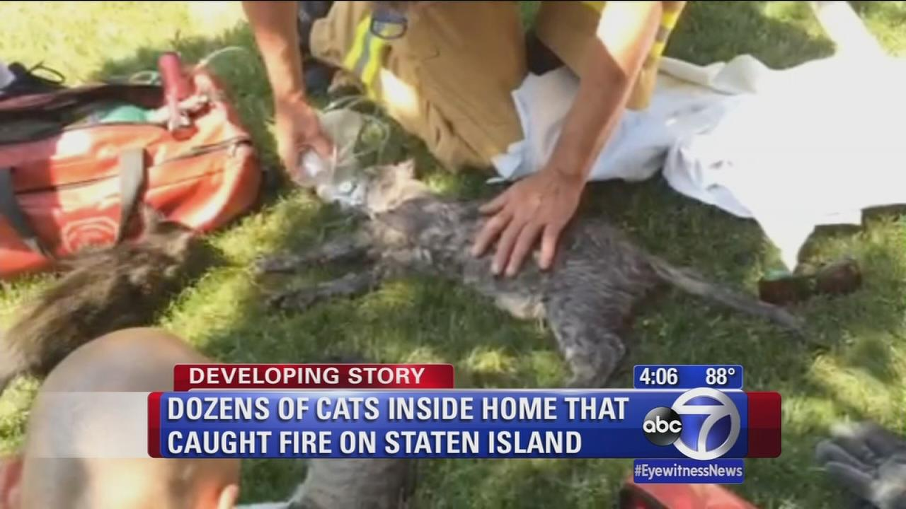 Woman, pets rescued from Staten Island house fire