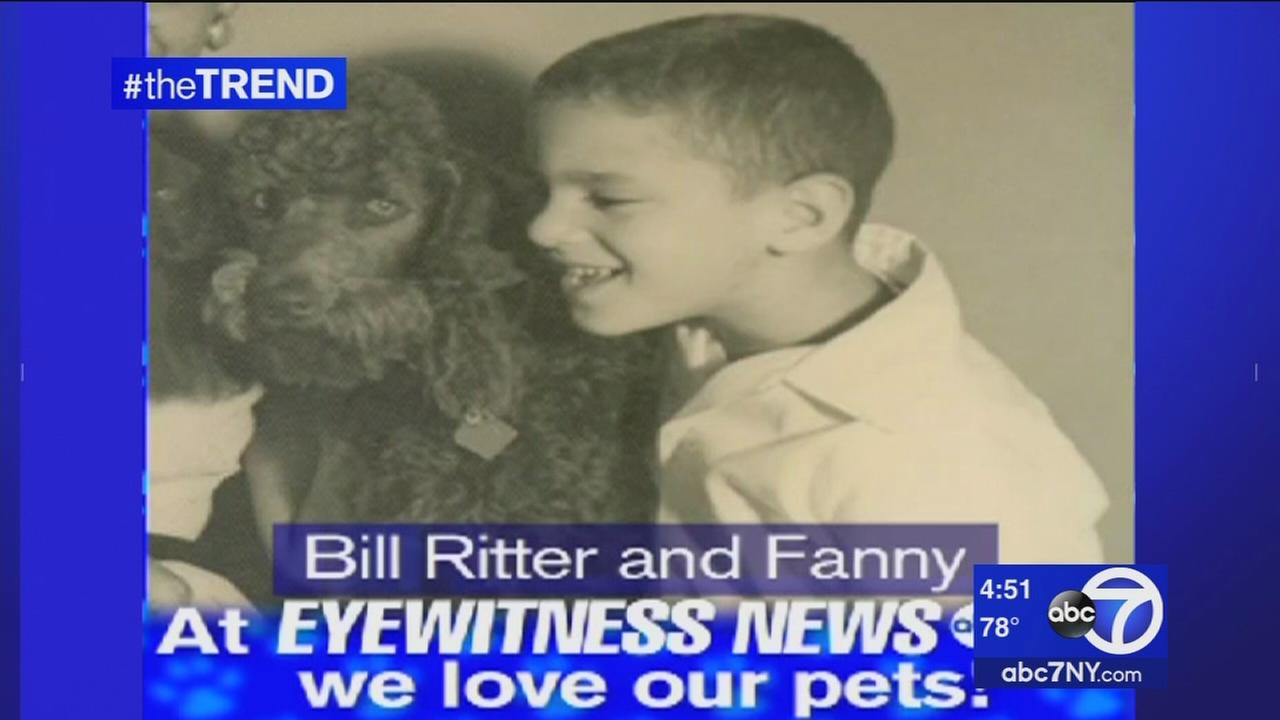 Eyewitness News team showing off pets for National Pet Day