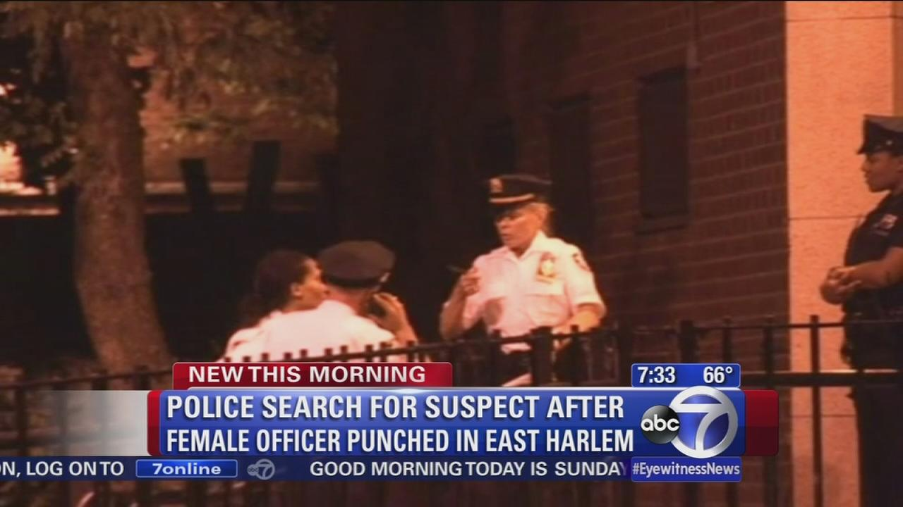 Police search for man who punched female NYPD officer in face