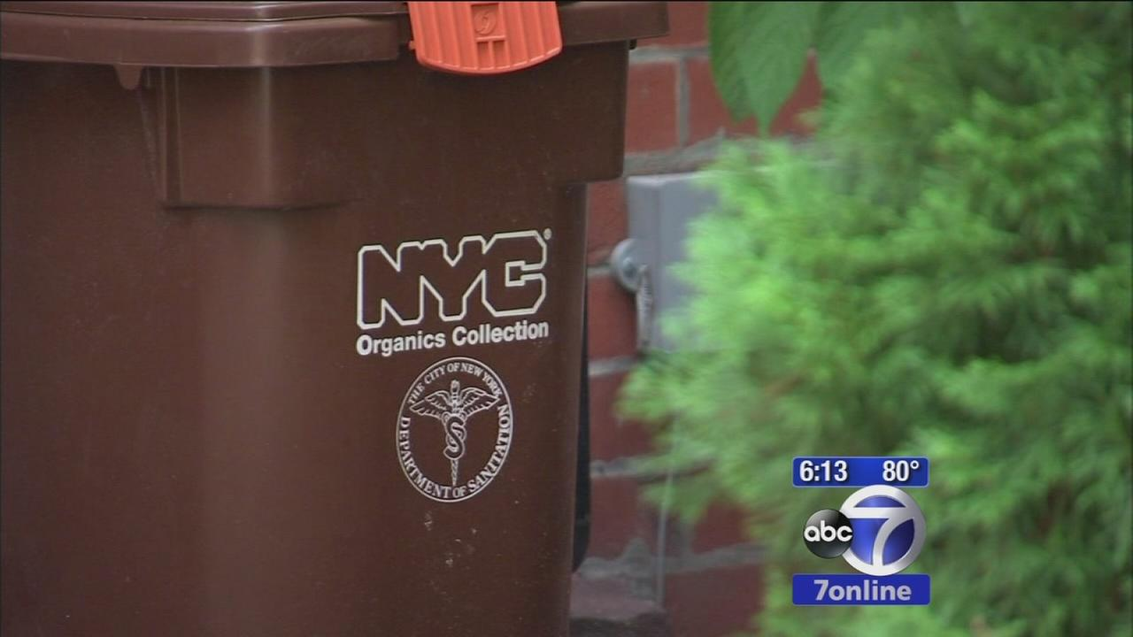 De Blasio family urge NYC to get into composting
