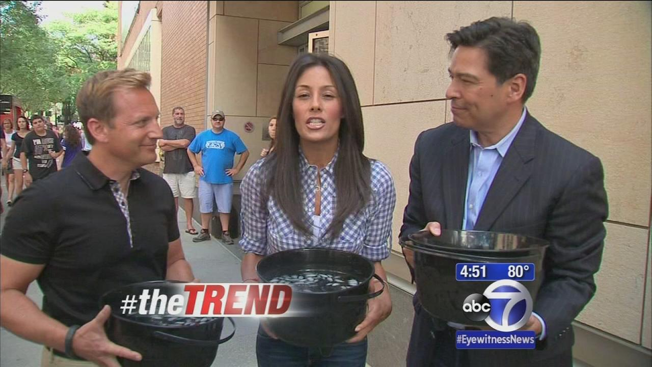 #theTREND: ABC anchors complete ice bucket challenge