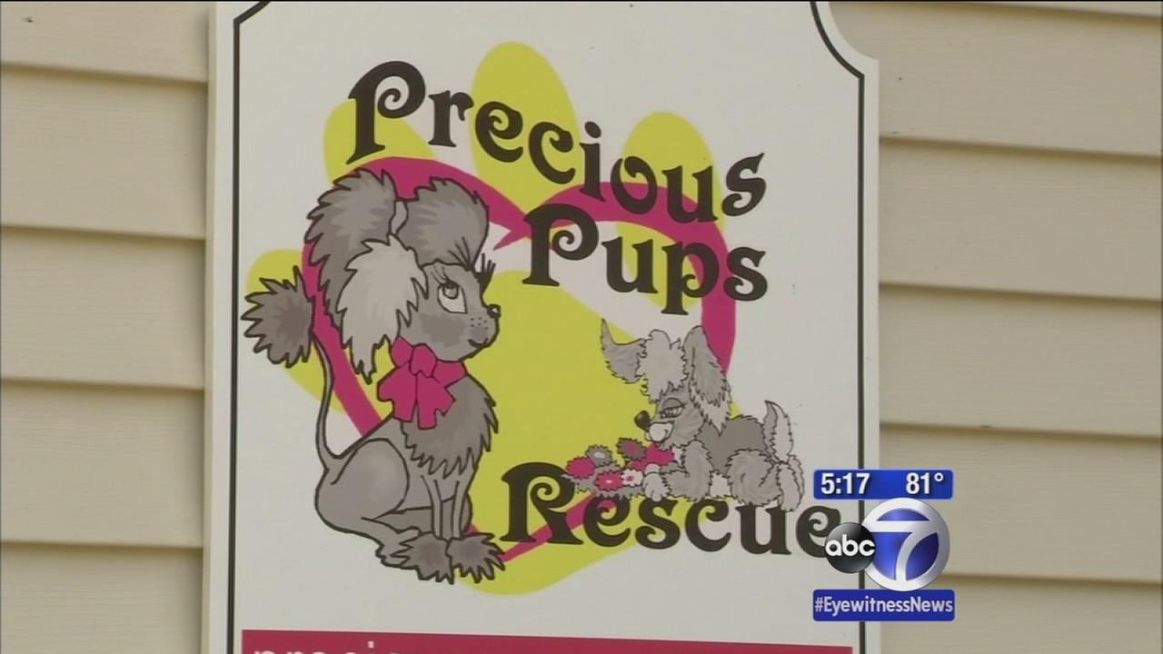 Owner shuts down adoption business after sick animal complaints