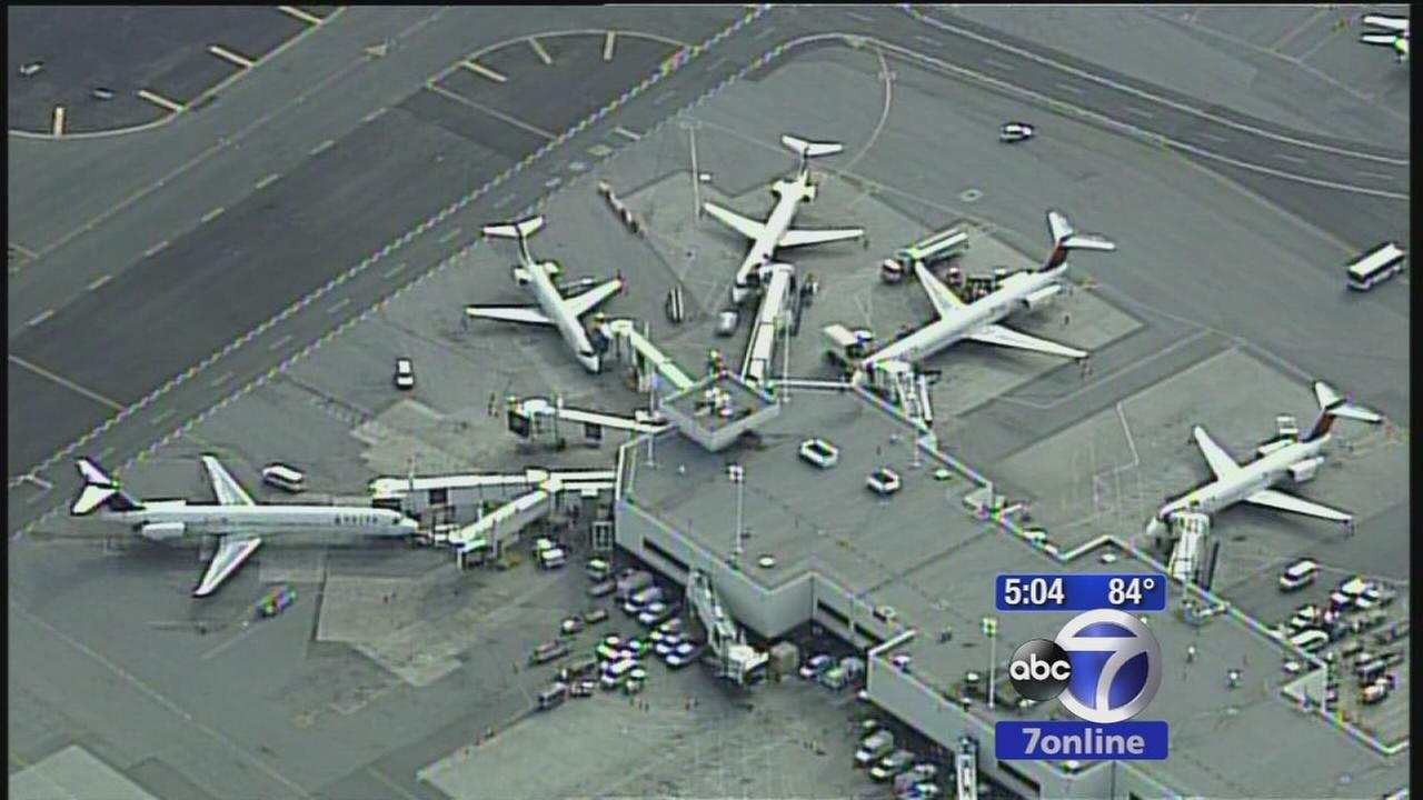 Birds hit 3 planes at LaGuardia