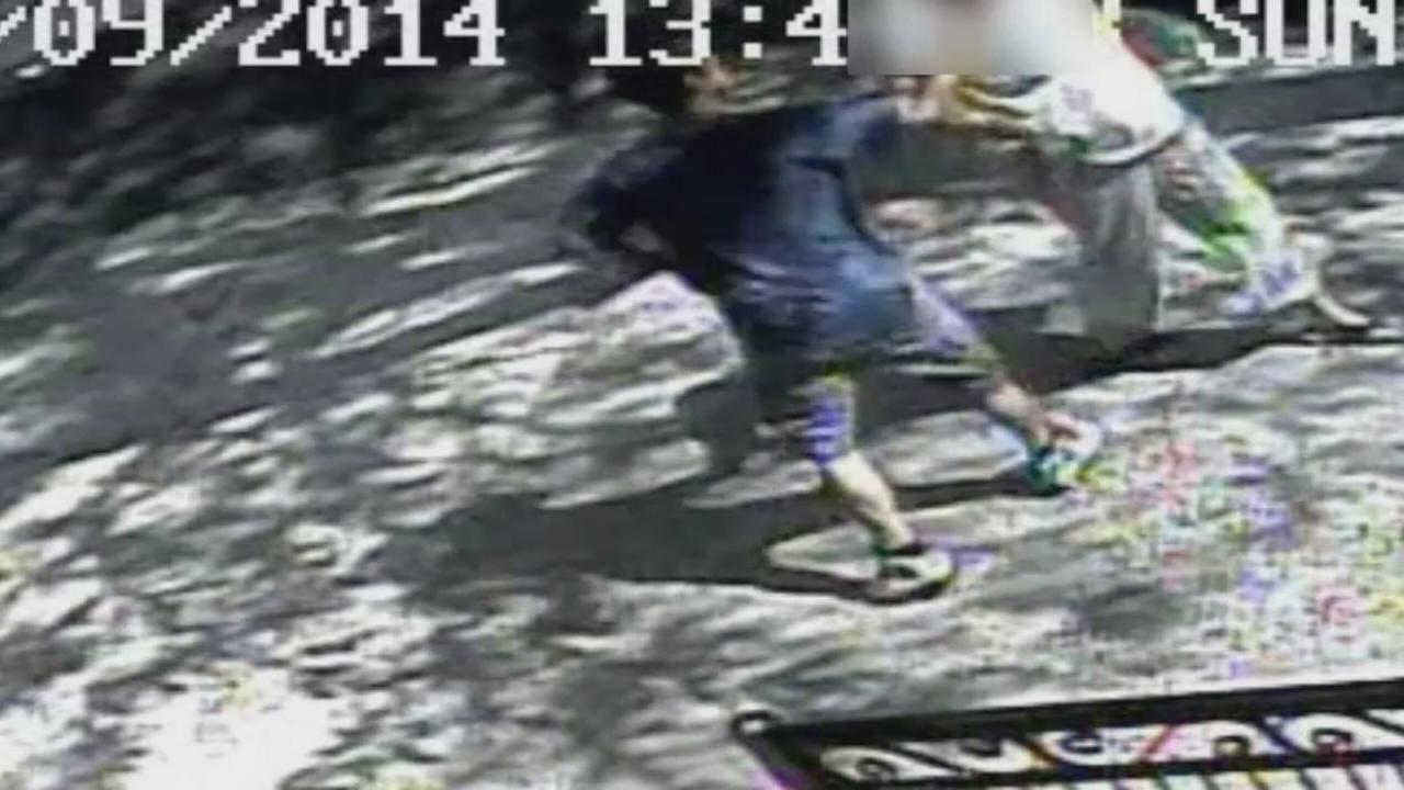 Elderly woman robbed in brazen broad-daylight chain snatching