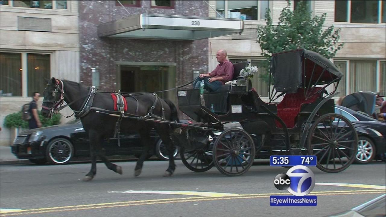 Councilman wants to keep horse-drawn carriages in city