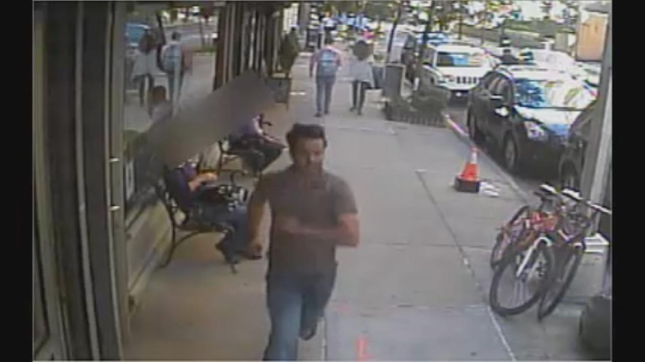 Greenwich Village attempted sex assault suspect