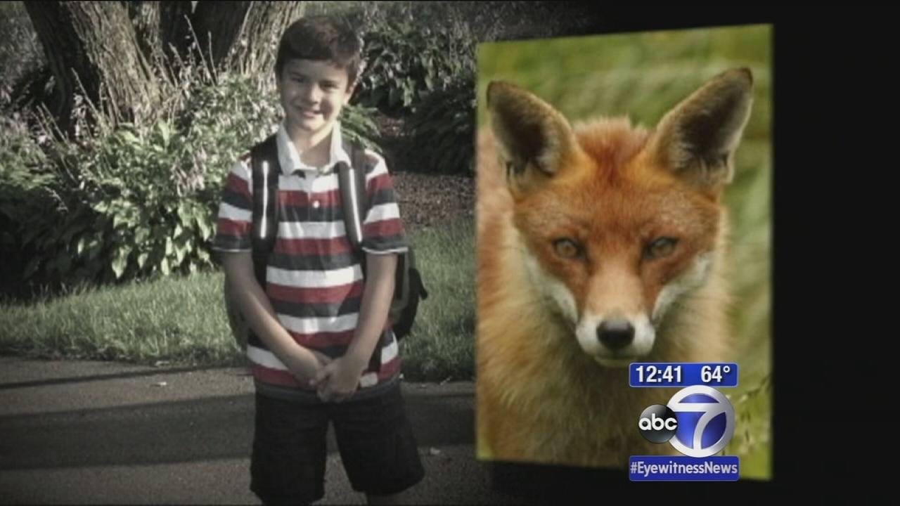 Gym teacher saves kid attacked by fox on Connecticut school playground