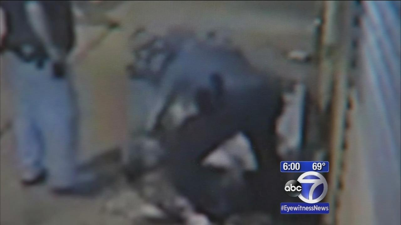 Alleged police brutality caught on camera in Brooklyn