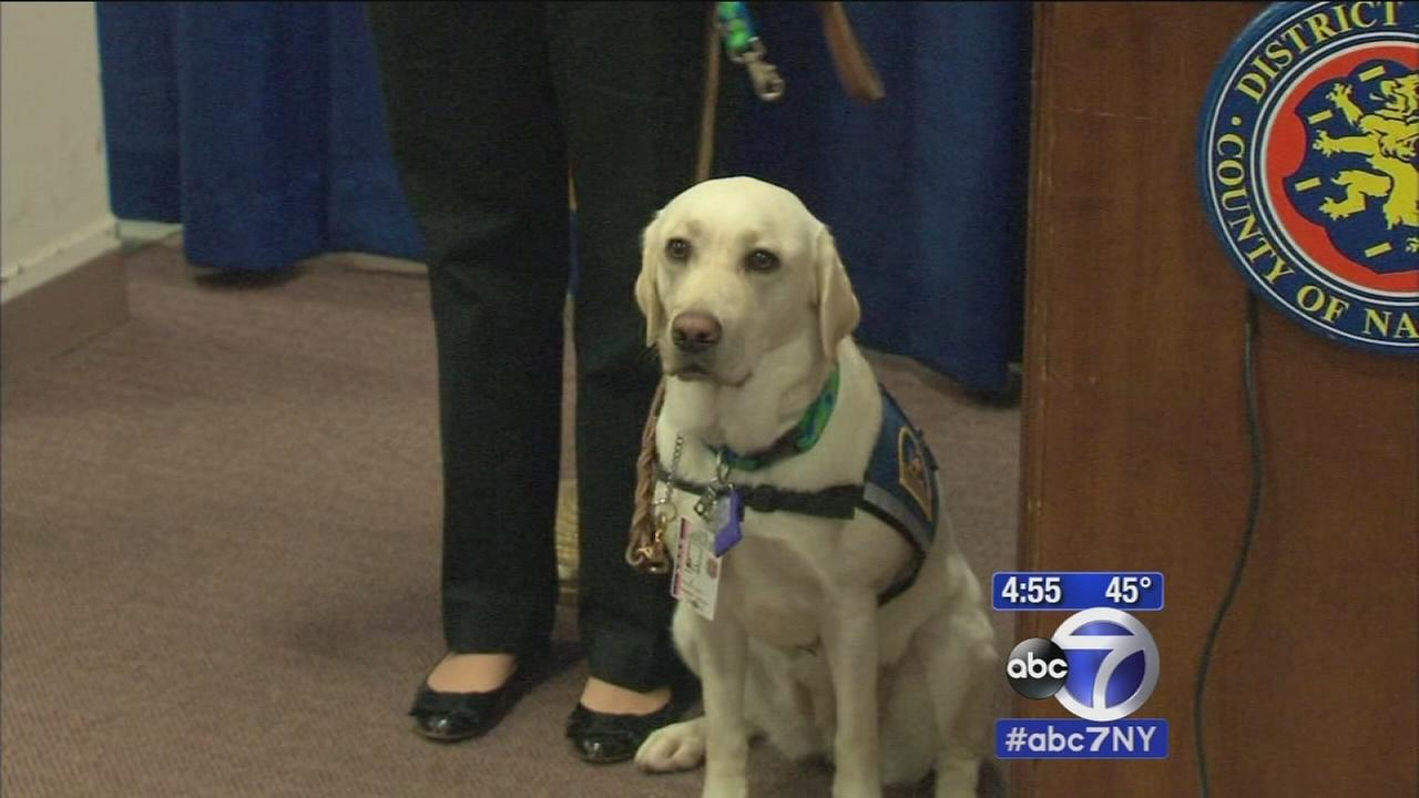 New canine crime-fighter introduced