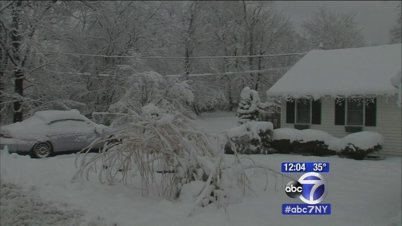 Storm knocks out power to thousands in NY, NJ
