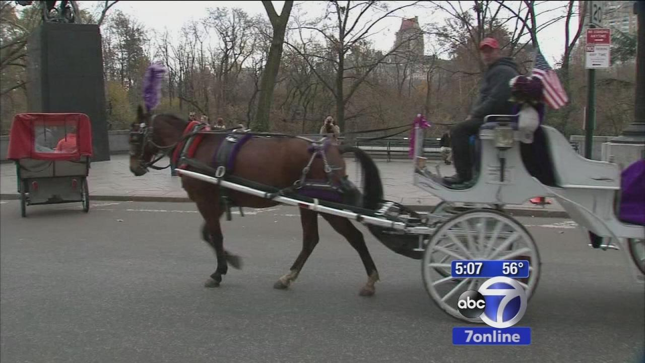 de Blasio sticking to self-imposted horse carriage deadline