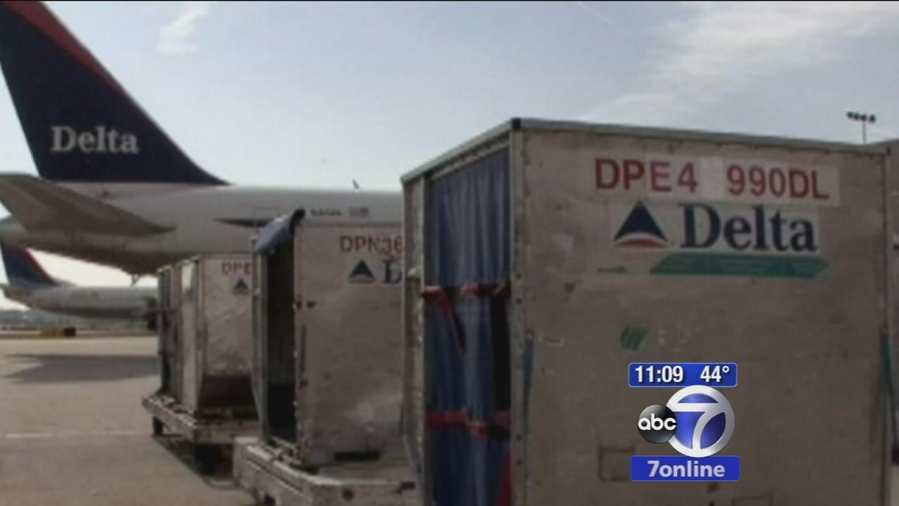 Delta baggage handler arrested for gun smuggling