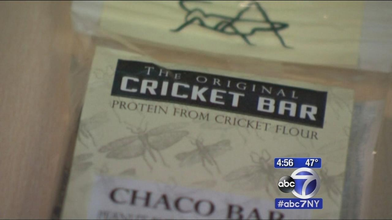 Cricket craze: How do they really taste?