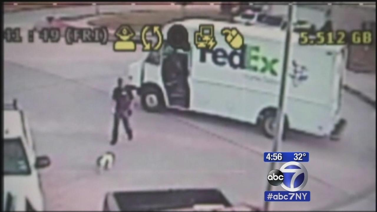 Fed-Ex driver accused of stealing dogs