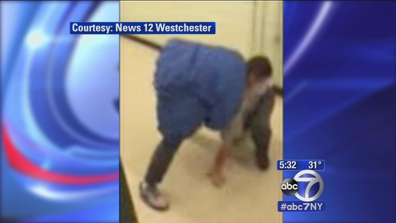 Yonkers high school freshman accused of beating up substitute teacher