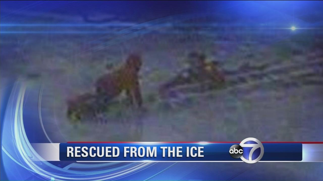 FDNY rescues young boy from thin ice on Bronx River