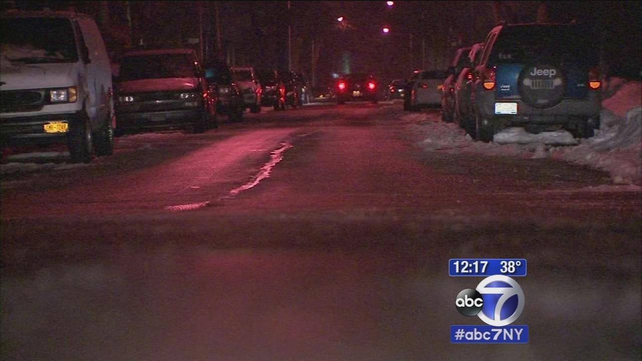 2 in custody after violent Queens carjacking spree