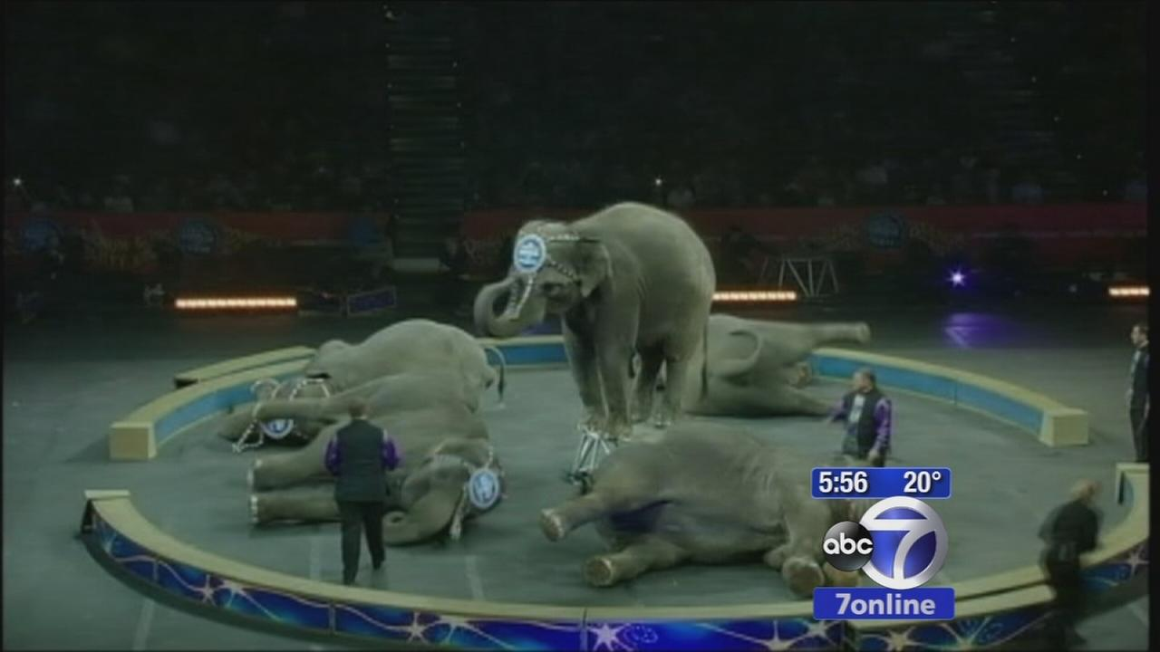 Elephants to pull disappearing act at the circus