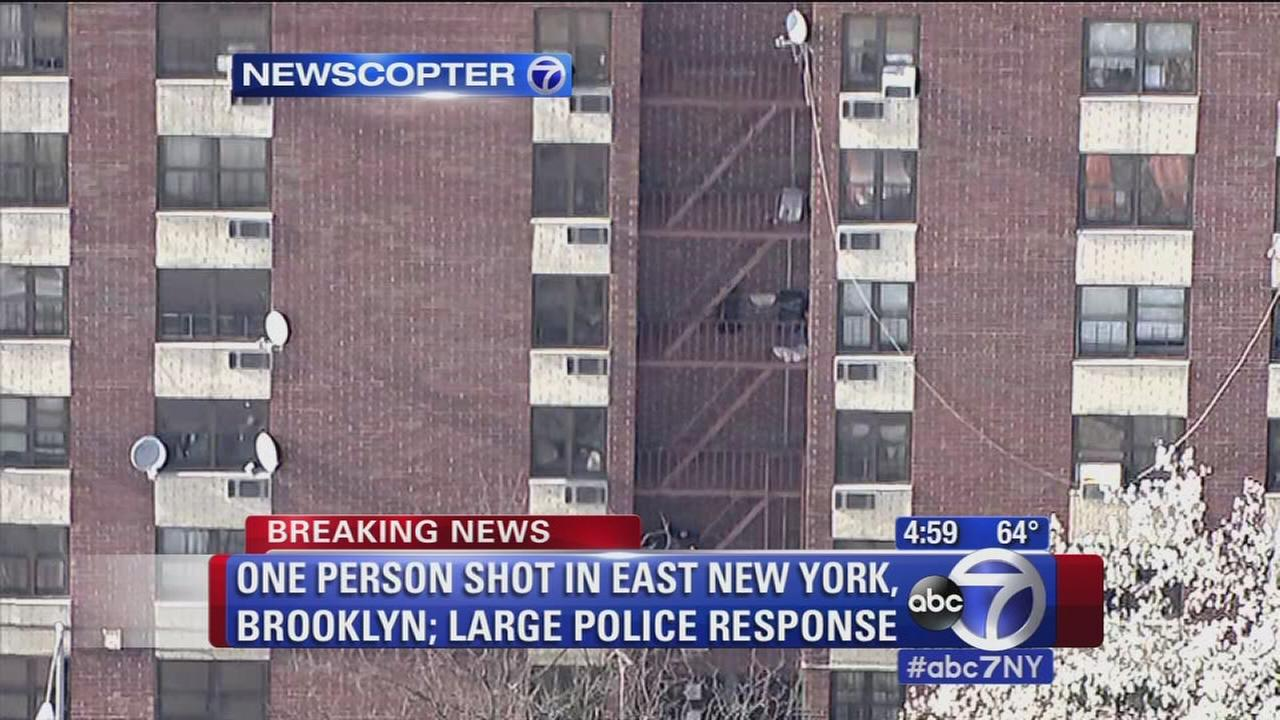 Person shot in East New York