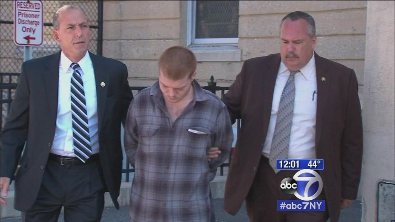 Teenager on LI admits to murder