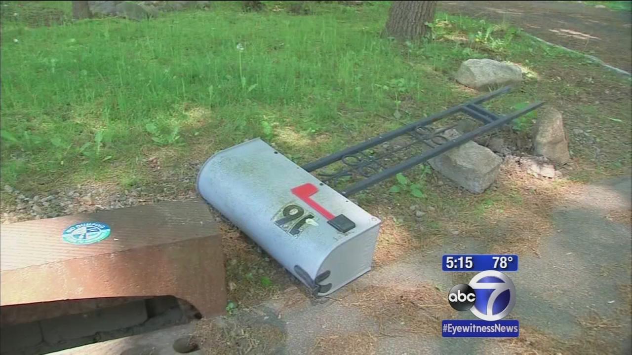 Vandalism spree in Parsippany, NJ