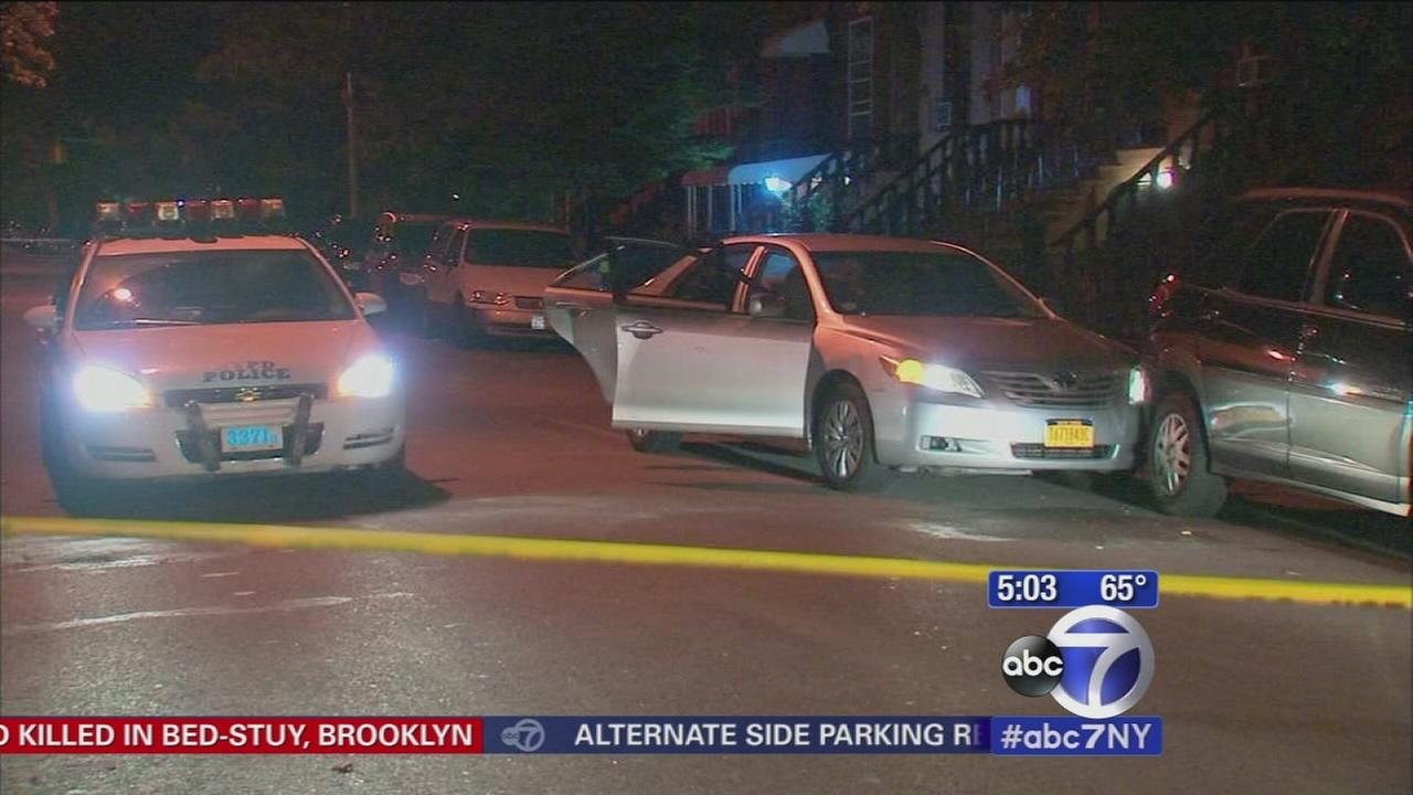 Livery cab driver shot and killed