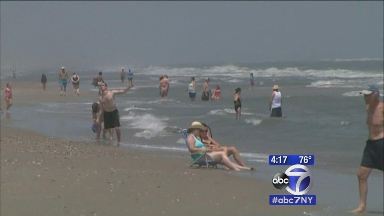 More shark attacks reported off North Carolina, South Carolina shores