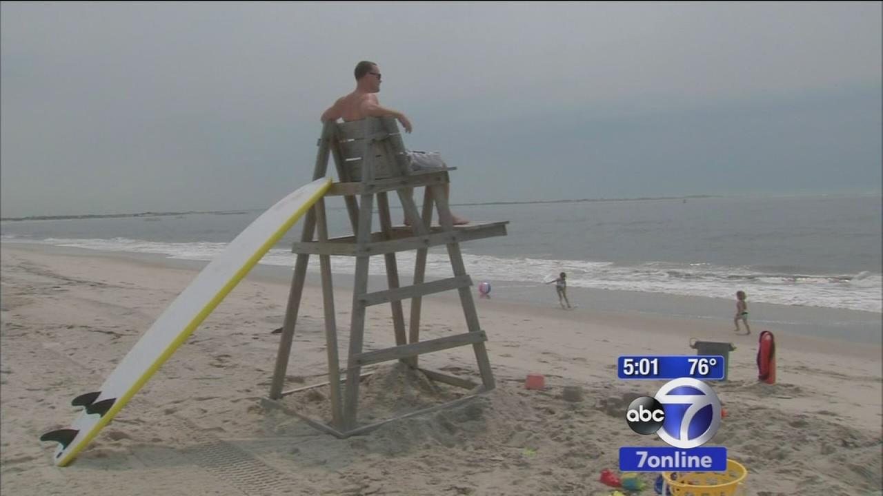 Beachgoers on alert after possible shark sighting at Babylon beach