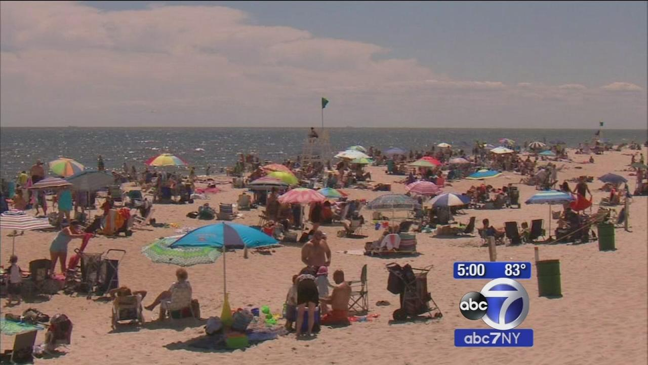 Two sharks confirmed swimming near shore at Long Island beach