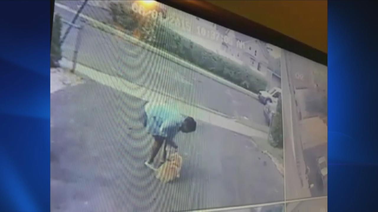 Woman caught on camera stealing dog