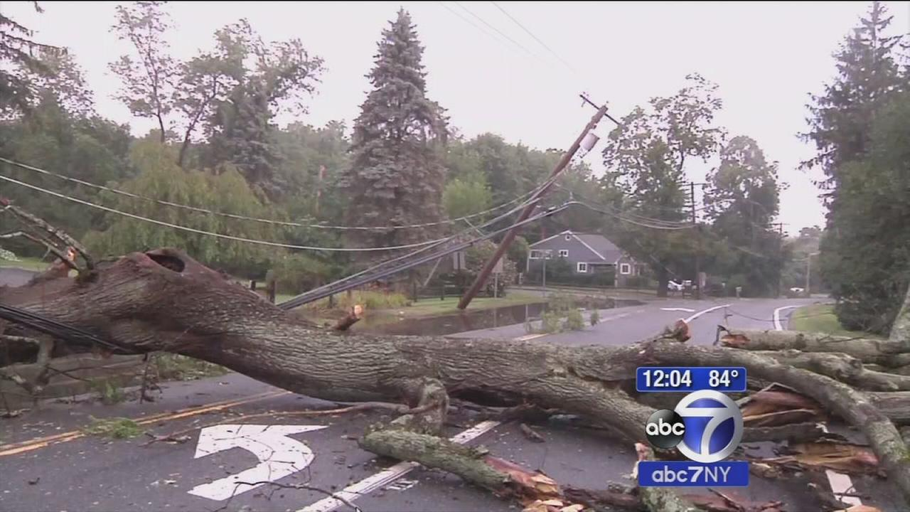 Severe storms bring down trees, power lines in Suffolk County