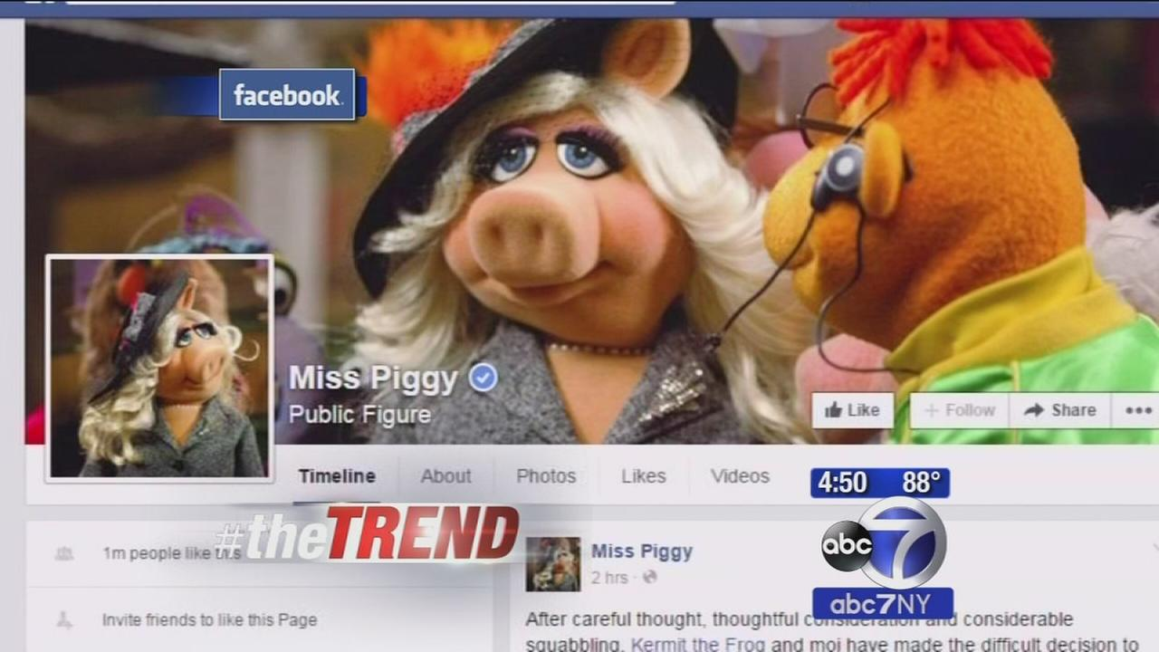 The Trend: Miss Piggy and Kermit the Frog call it quits!