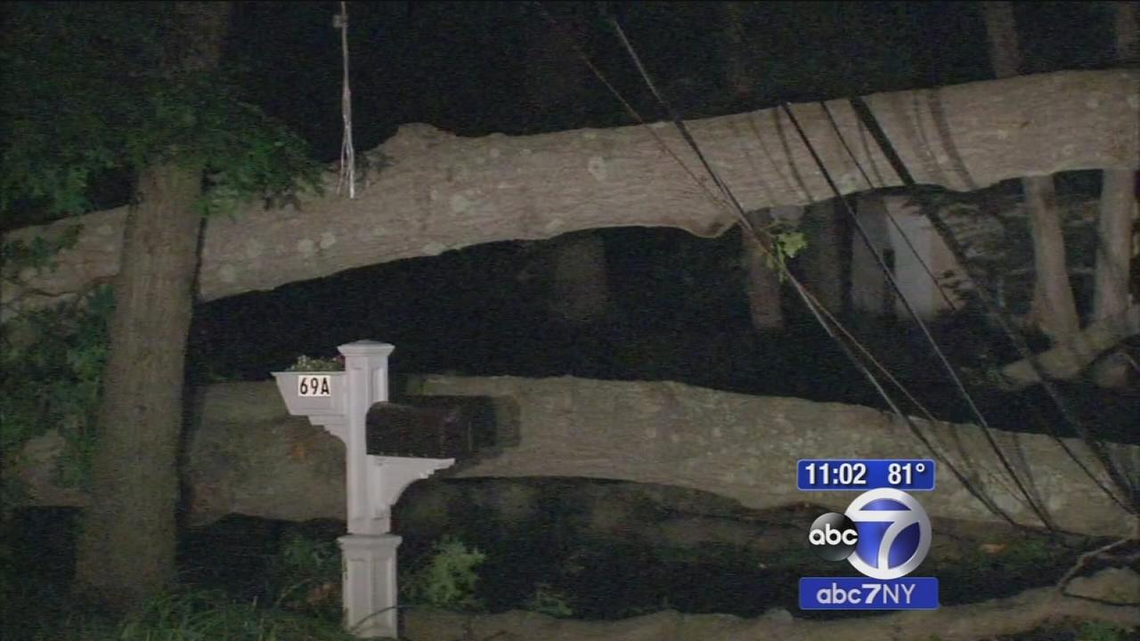 Thousands expected to stay in the dark until Friday on Long Island due to storm damage