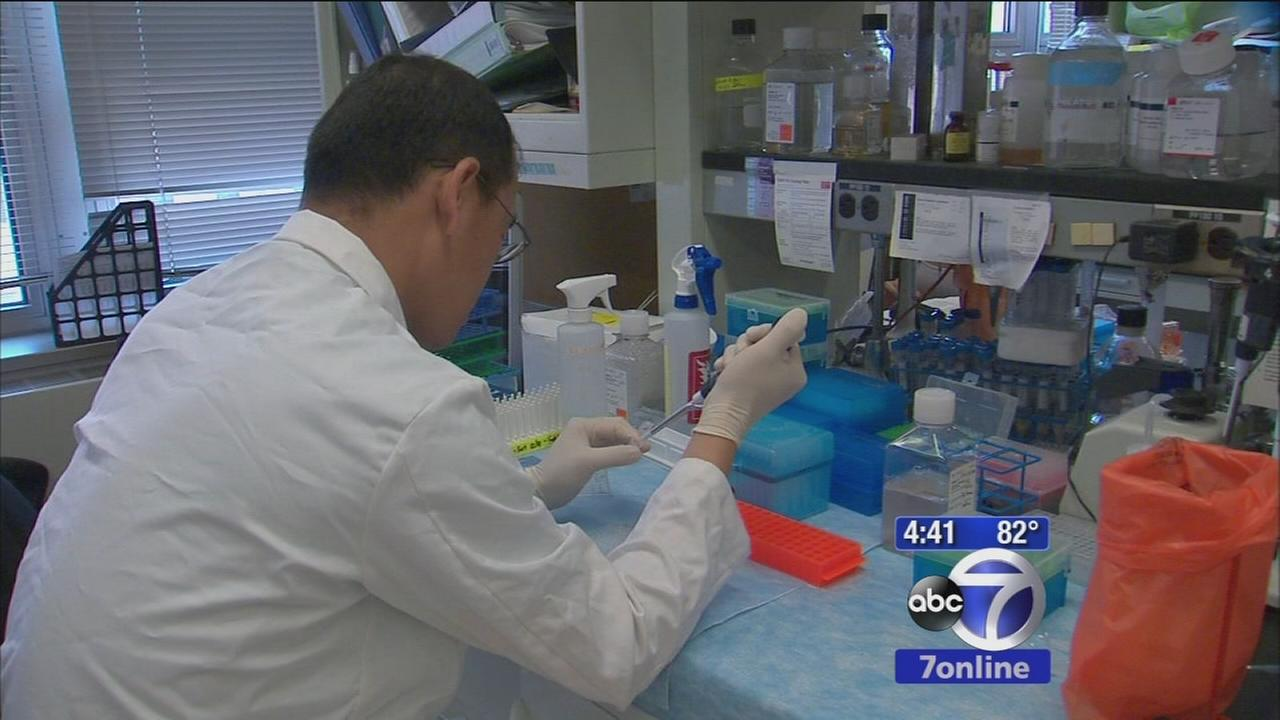 New cancer therapy boosts immune system to fight disease