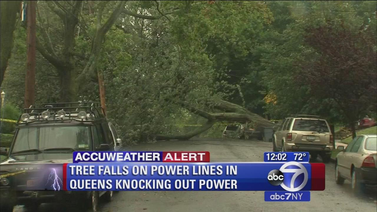 Tree falls on power lines, knocks out power in Queens after heavy rain